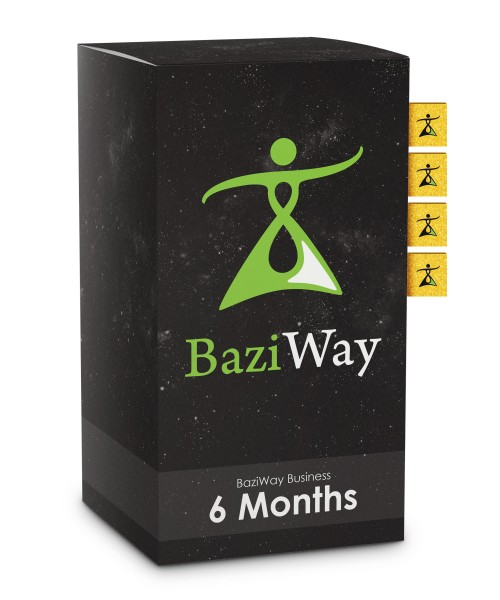 BaziWay Business 6 Months